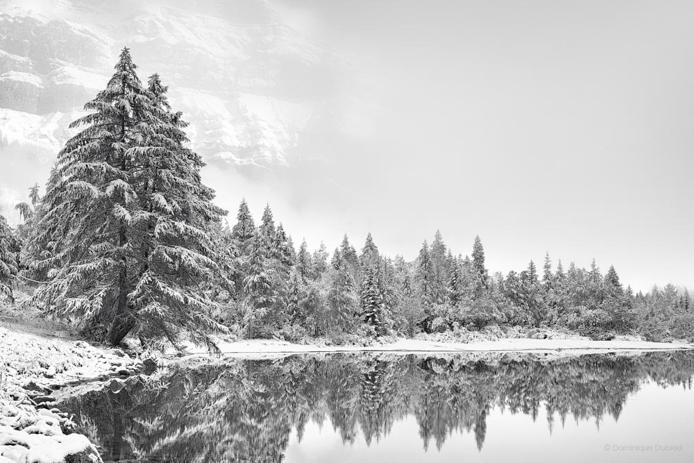 Photo in Landscape #winter #white #mountains #snow #lake #reflections