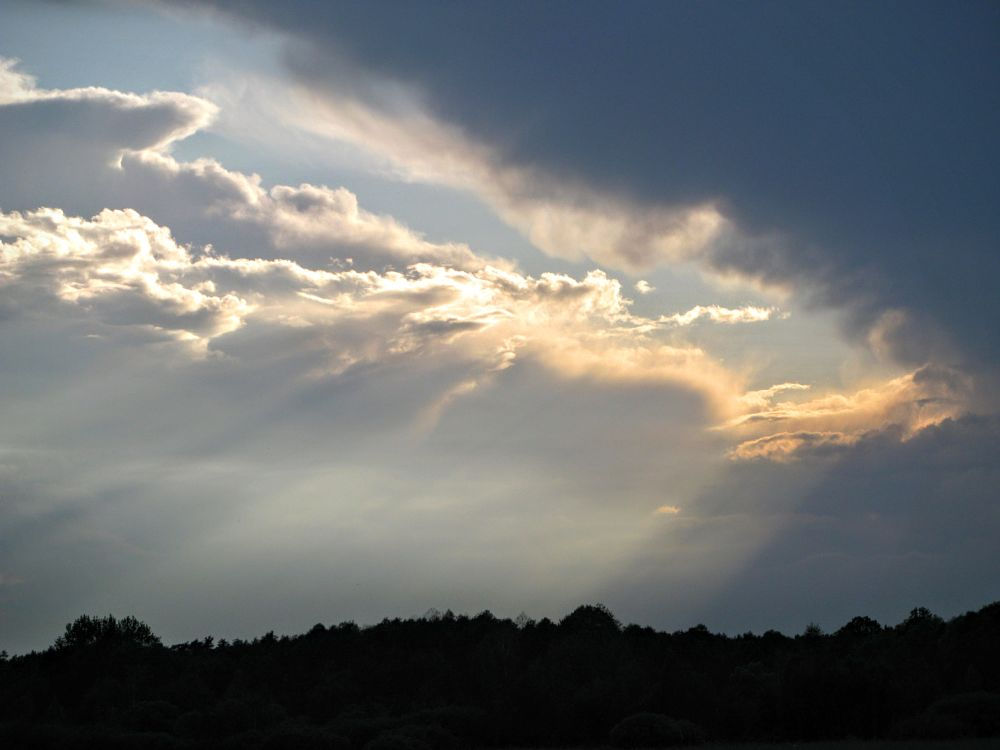 Photo in Nature #sky #sunbeams #clouds #cloudy