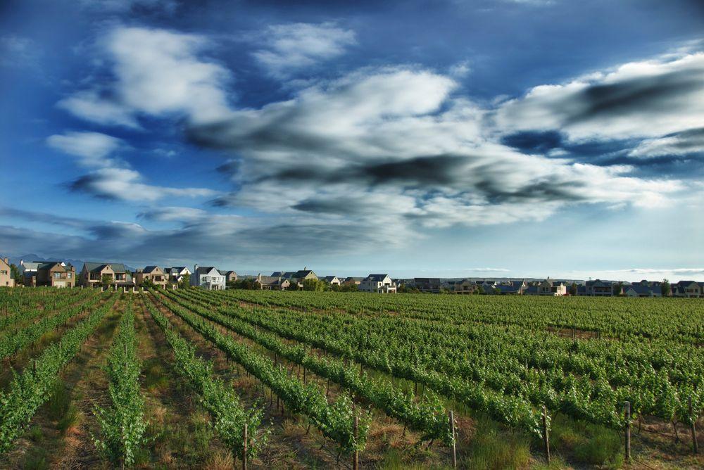 Photo in HDRI #wine lands #stellenbosch #cape town #hdr image