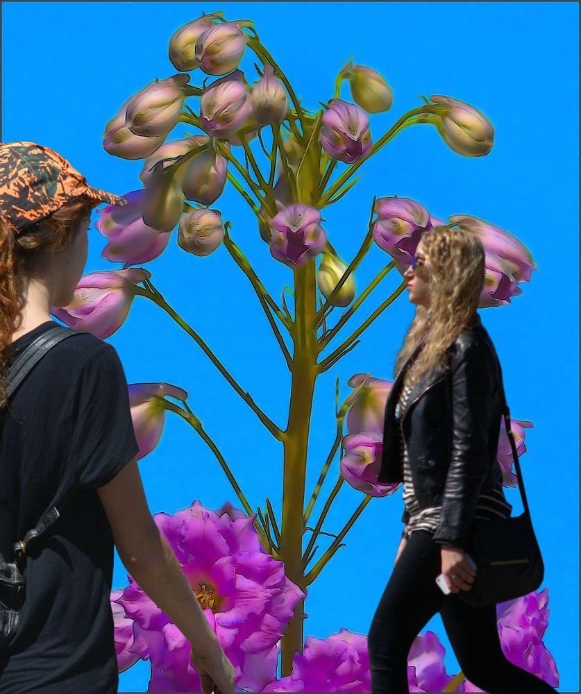 Photo in Random #memories #fragments #women #females #sky #flowers #remembering