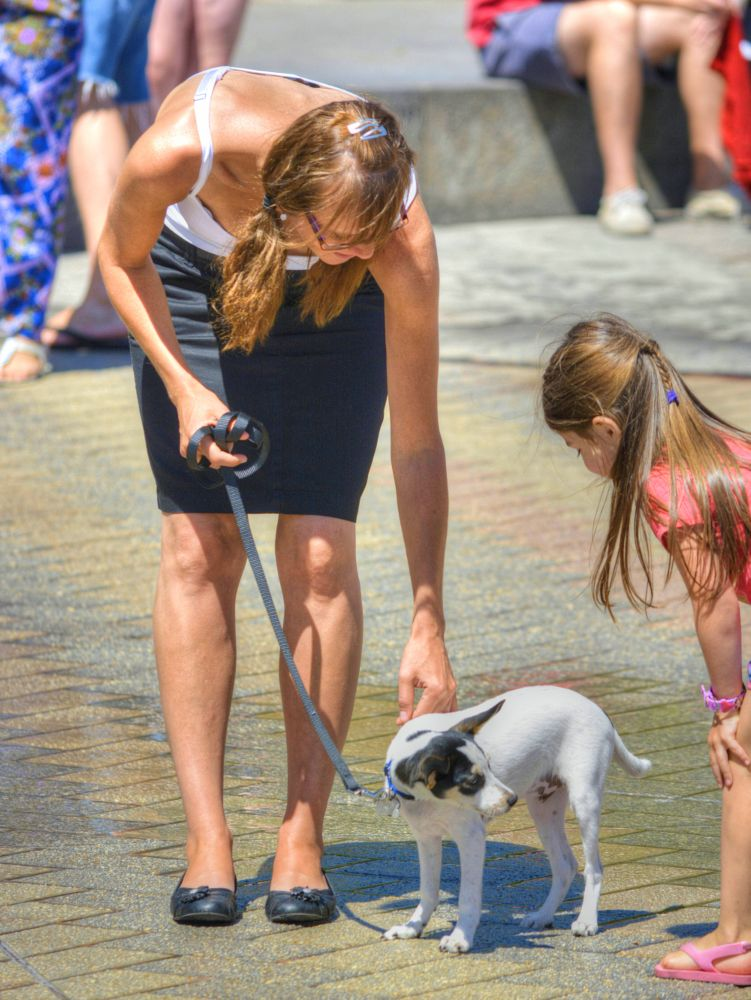 Photo in Animal #woman #female #kid #girl #dog #introduction #introduce #cute