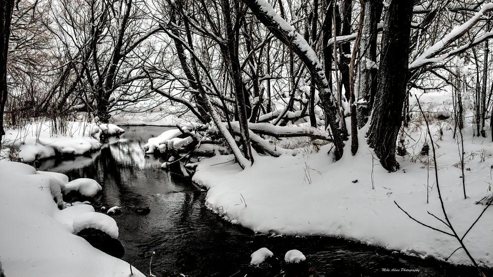 Photo in Landscape #winter #brook #snow