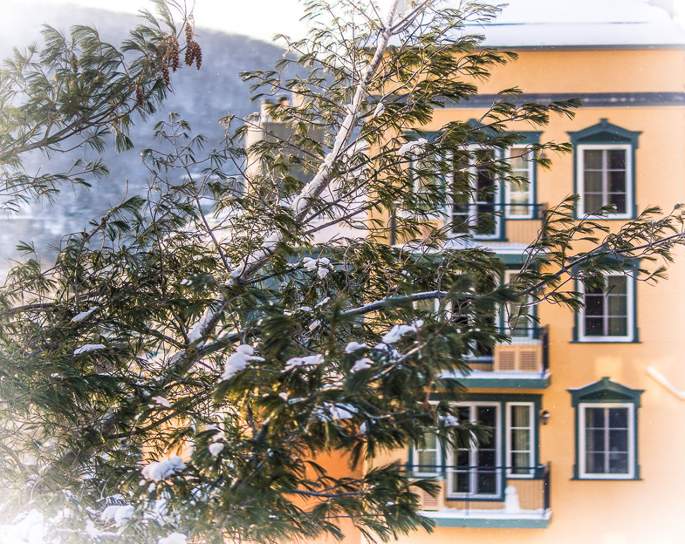 Photo in Random #winter #window #landscape
