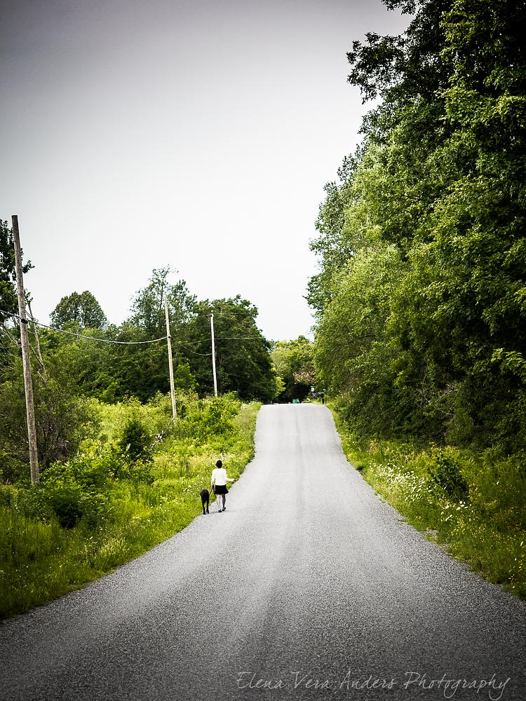 Photo in People #dog #walking a dog #nature #gravel road #summer
