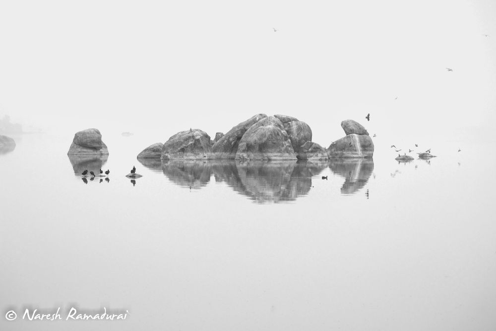 Photo in Fine Art #hussain sagar #hyderabad #india #reflection #birds #naresh ramadurai #dream lenz #dreamlenz