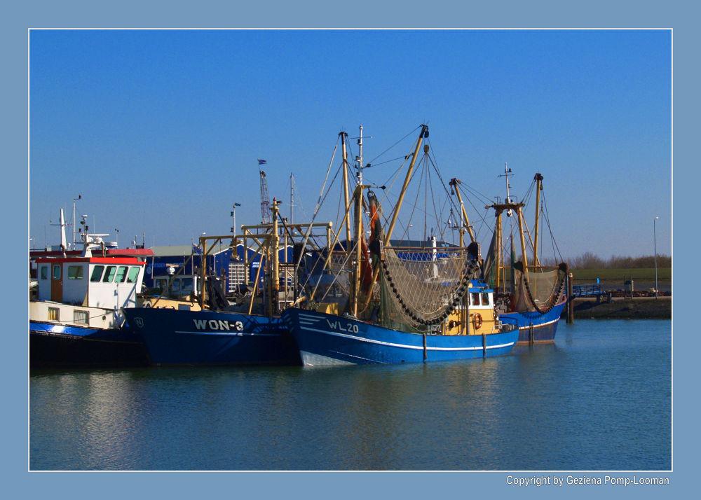 Photo in Random #zoutkamp #boats #boten #haven #harbour #holland