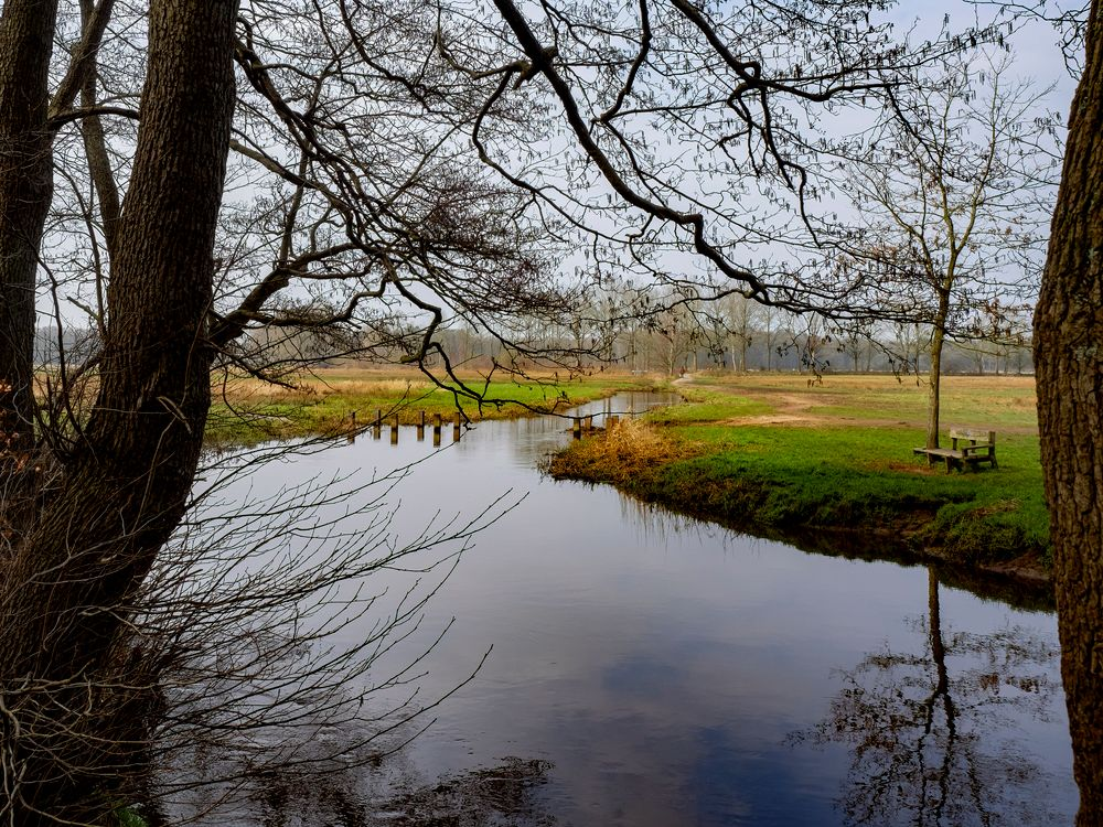 Photo in Random #meanderen #water #beekje #natuur #landschap #natuurgebied #wandelen #em1 #omdem1 #12-40mm #olympus