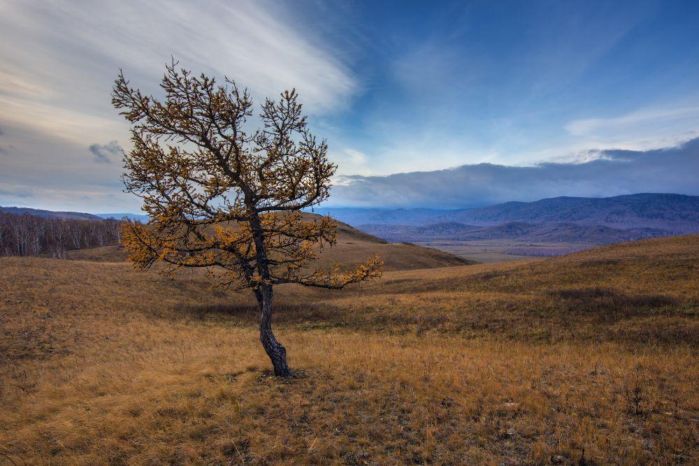 Photo in Random #урал #горы #осень