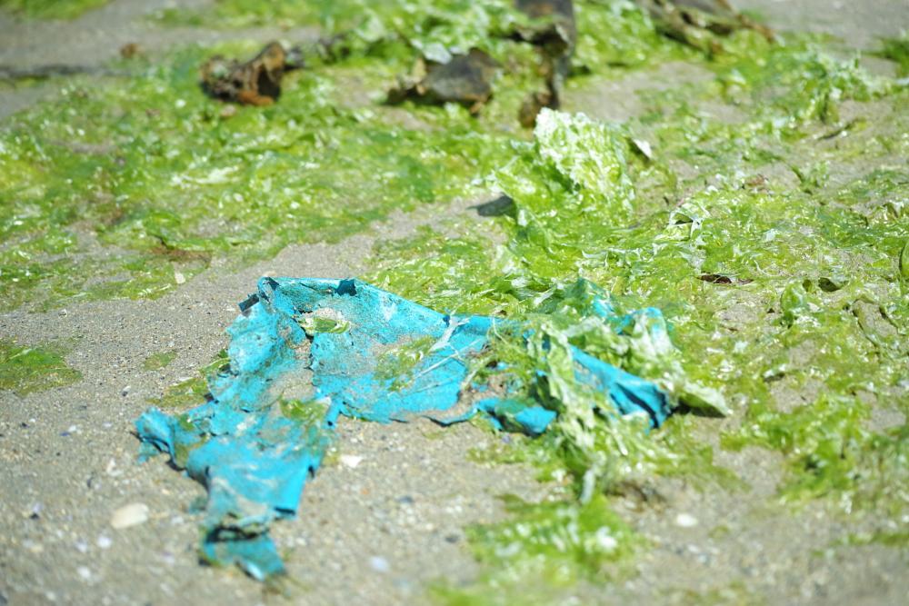 Photo in Sea and Sand #pollution #plage #bretagne