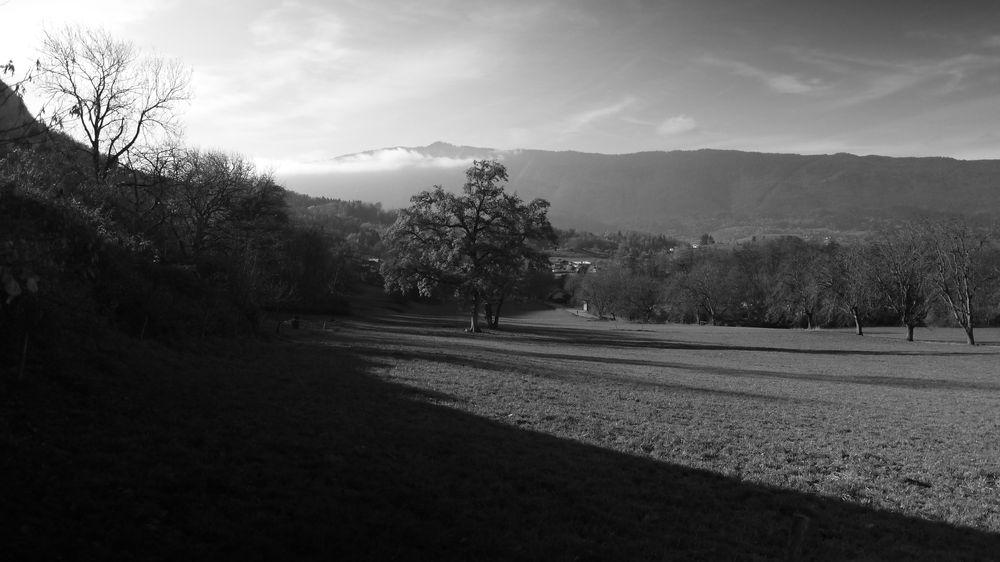Photo in Black and White #mountains #monochrome #trees #pasture #black&white #haute-savoie #cloudy