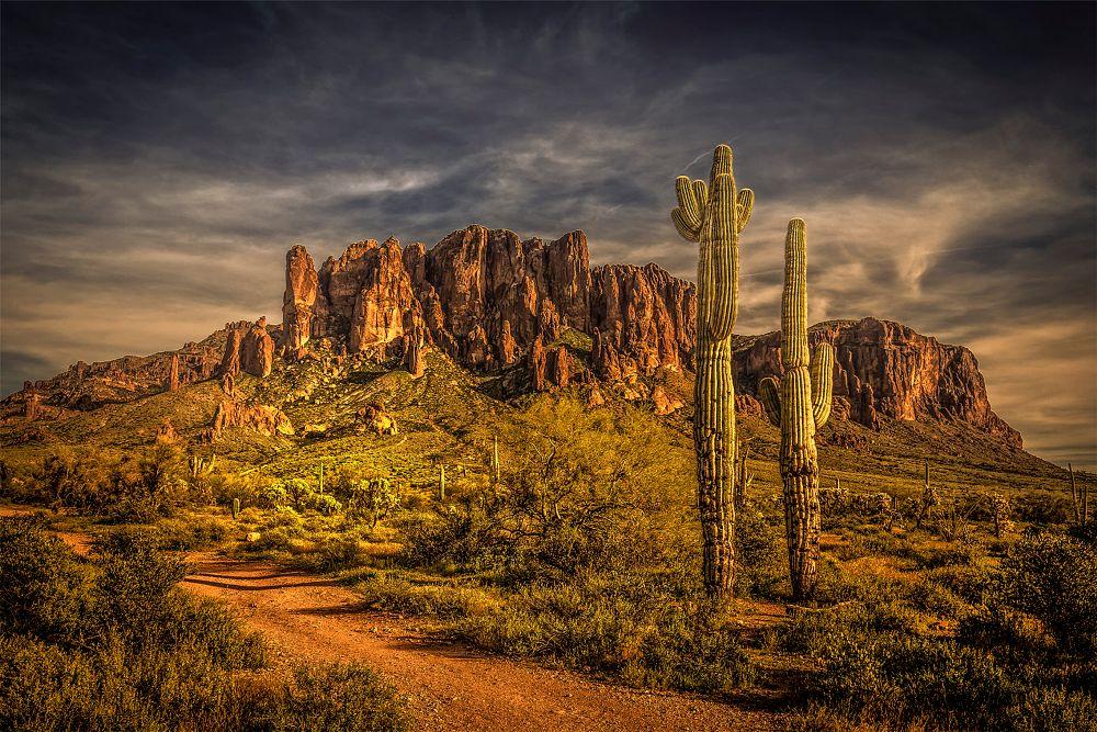 Photo in Landscape #supersition #mountain #desert #catus #arizona #saguaro #sand #clouds