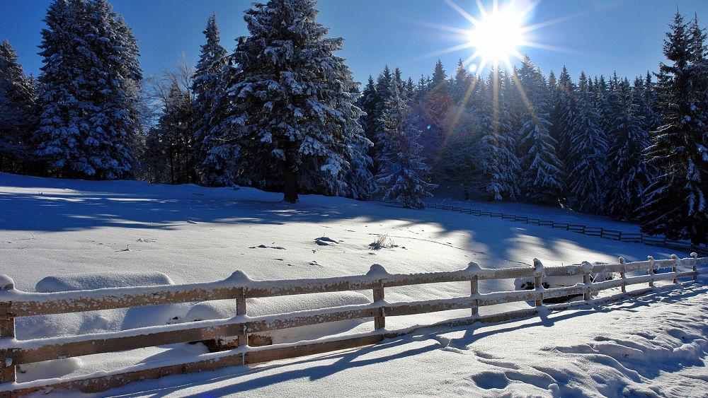 Photo in Random #wintwr #snow