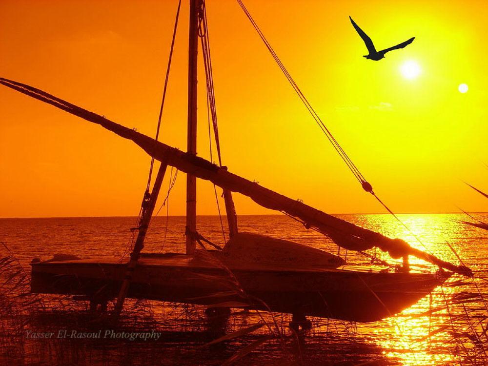 Photo in Nature #ypa2013 #manzalla lake #boats #sunset & sunrise