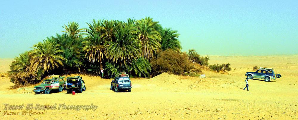 Photo in Random #ypa2013 #white desert #desert