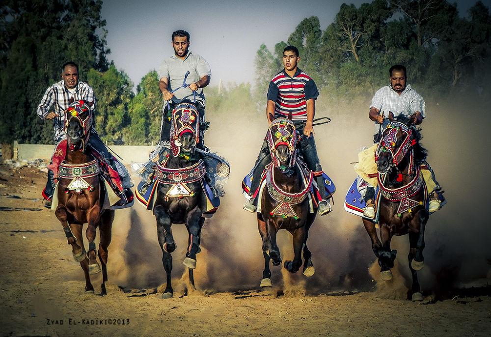 Photo in Sports #horse #run #sport