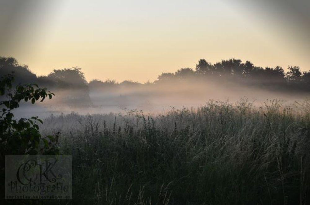 Photo in Random #nebel #morgennebel #tau #sonnenaufgang