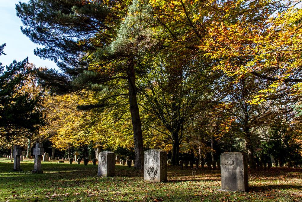 Photo in Landscape #cemetery #forest #waldfriedhof #stuttgart