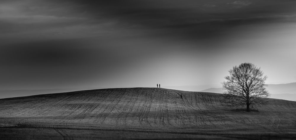 Photo in Black and White #hill #people #tree #sky #clouds #black #white #field #meadow #mood #slovakia #poproč #rudník