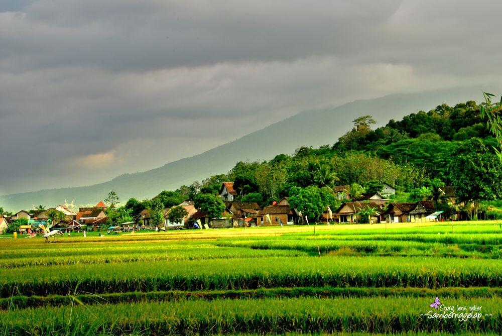 Photo in Random #rural #mountain #village #valley