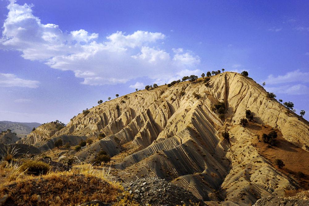 Photo in Nature #nature #iran #yasooj