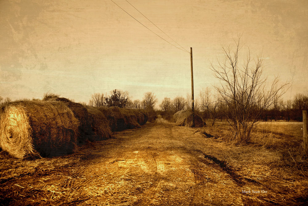 Photo in Random #ypa2013 #straw hill road #indiana #markseanorr #rural #landscape #sepia #bucolic #country #raintree county #midwest