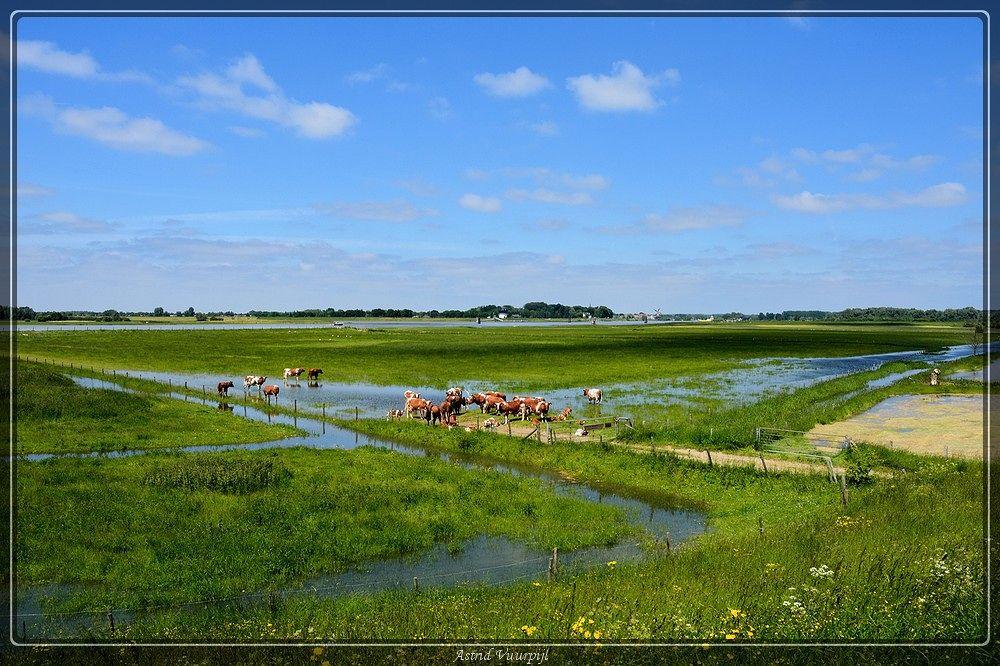 Photo in Landscape #blauwe kamer #natuur