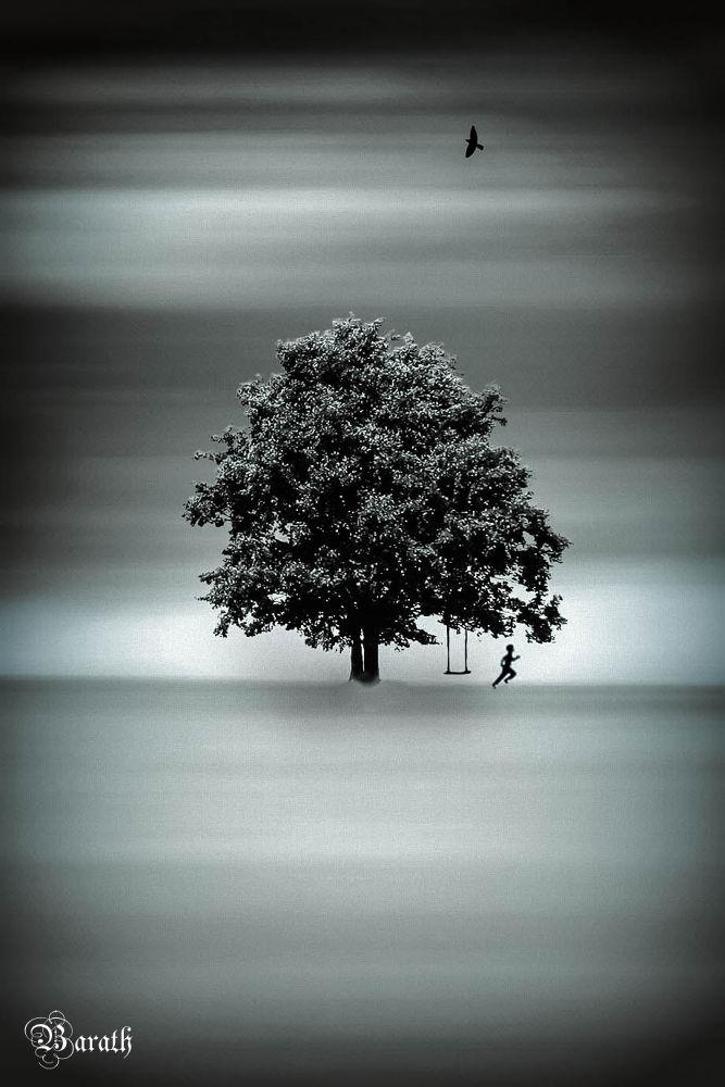 Photo in Fine Art #ypa2013 #tree
