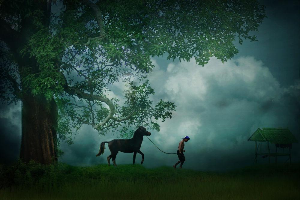 Photo in Random #nature #children