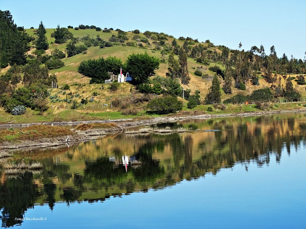 Photo in Landscape #reflection #water #tree