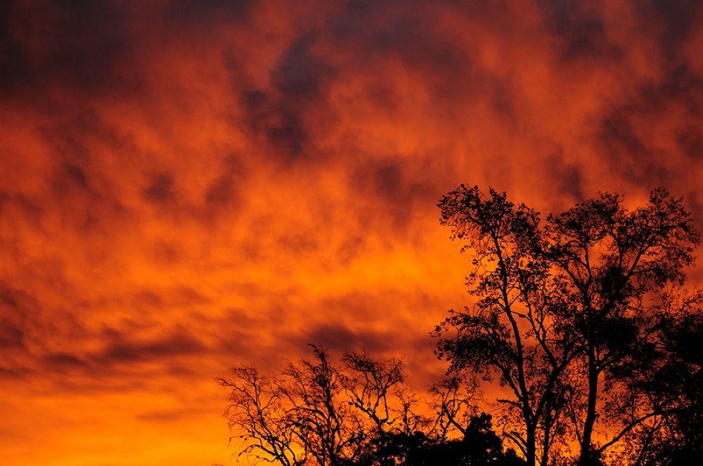 Photo in Landscape #paisaje #color #cielo