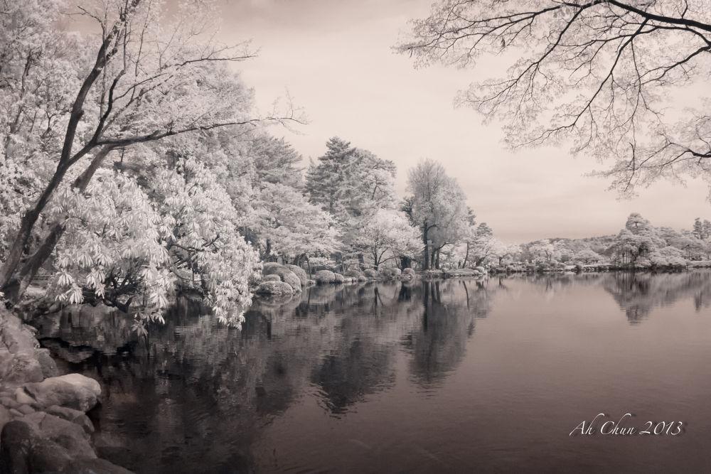 Photo in Random #japan #lake #landscape #tree #infra red
