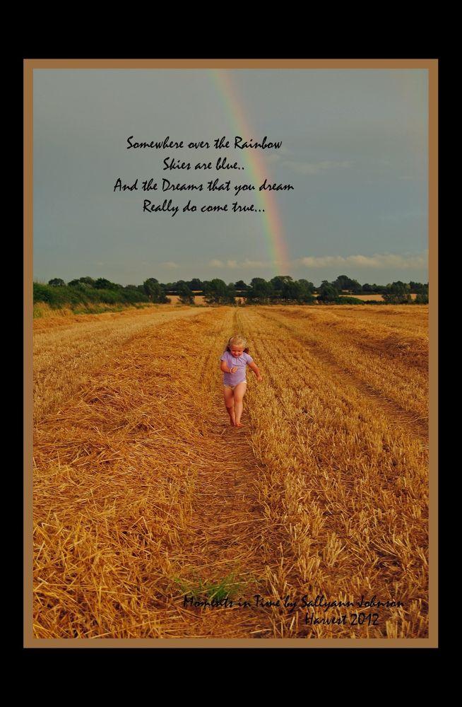 Photo in Random #harvest child  rainbow  ha