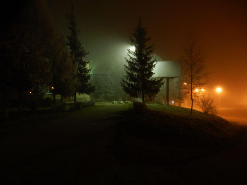 Photo in Cityscape #cityscape #night #fog #colors #russia #route