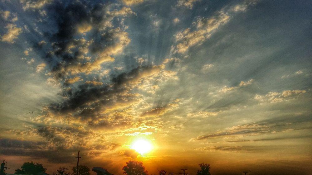 Photo in Landscape #sun #sunrise #nature