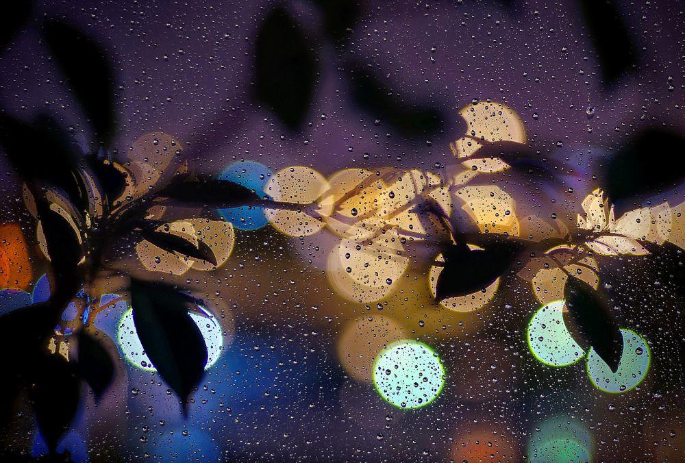 Photo in Random #purple rain #bokeh