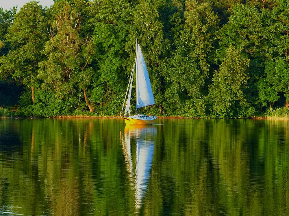 Photo in Landscape #reflection #lake