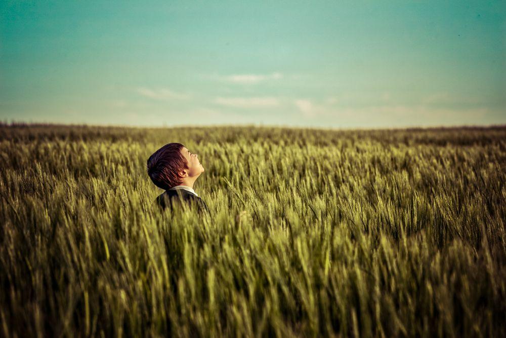 Photo in People #cornfield #boy #sun #field #walking #sussex