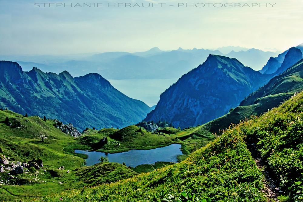 Photo in Landscape #lac #lake #mountain #leman #montagne #randonnee #hiking
