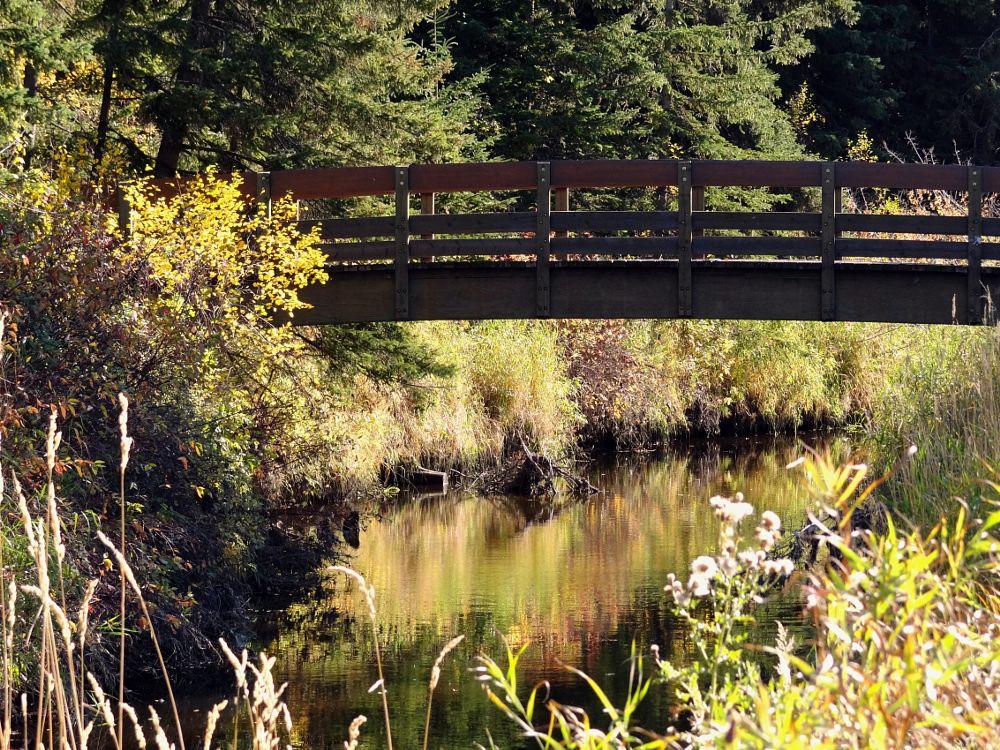 Photo in Landscape #bridge #walking bridge #creek #fall #water