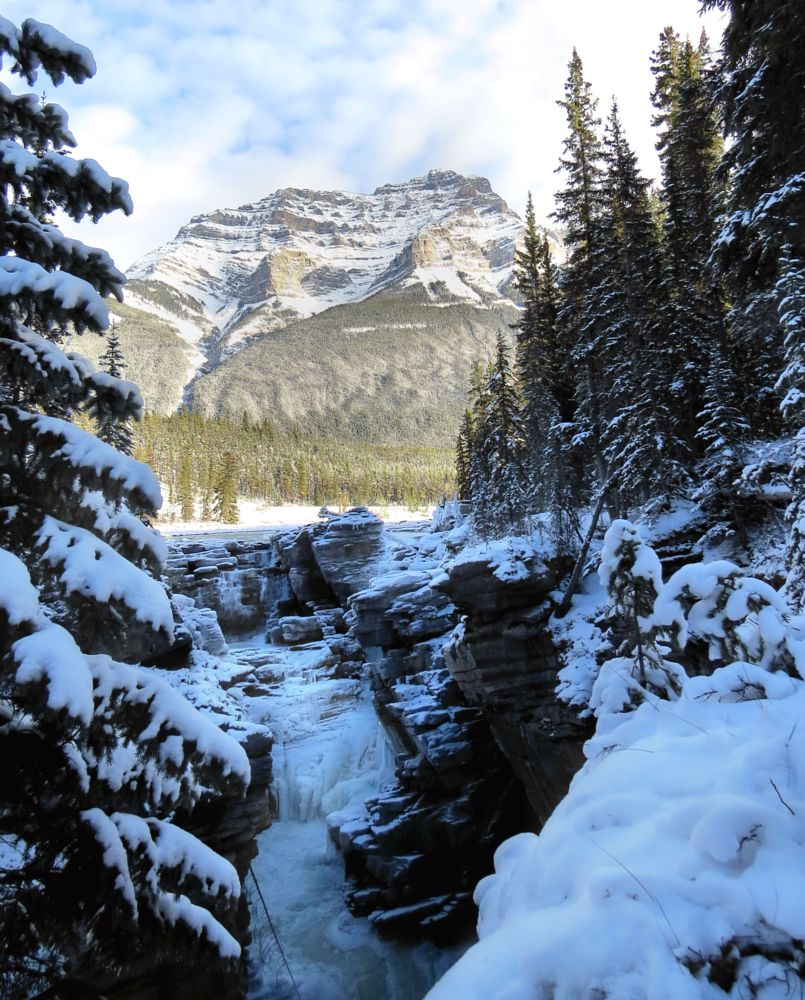 Photo in Landscape #falls #frozen #winter #athabasca falls #tourism