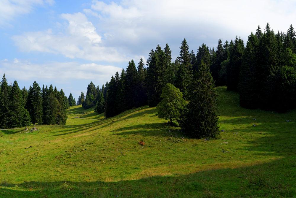 Photo in Landscape #switzerland #suisse #jura vaudois #jura