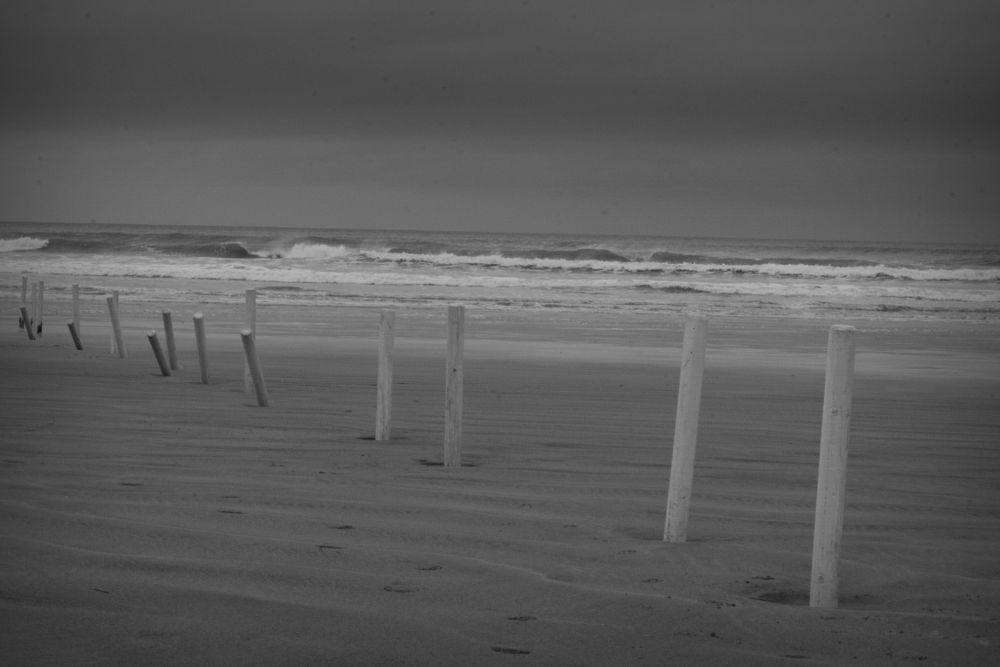 Photo in Sea and Sand #beach #coast #windy #overcast #shore #sea