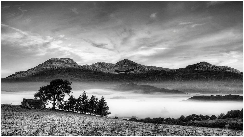 Photo in Black and White #moelwyn #blaenau ffestiniog #manod #snowdonia #llan ffestiniog #dawn #mist