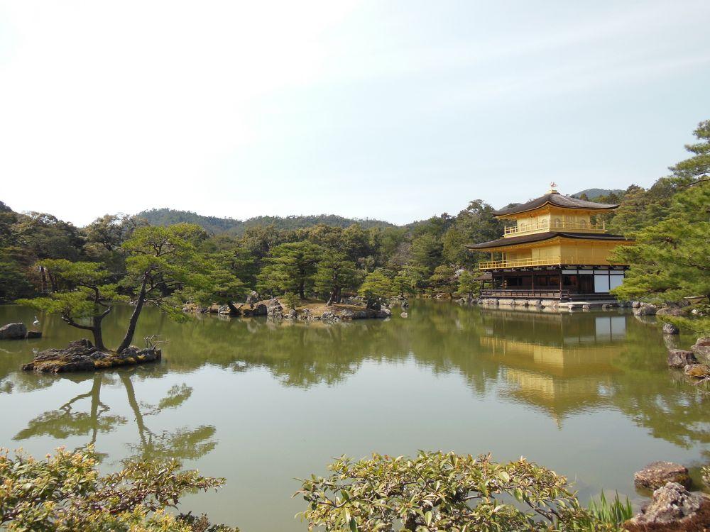 Photo in Travel #kinkaku #kyoto