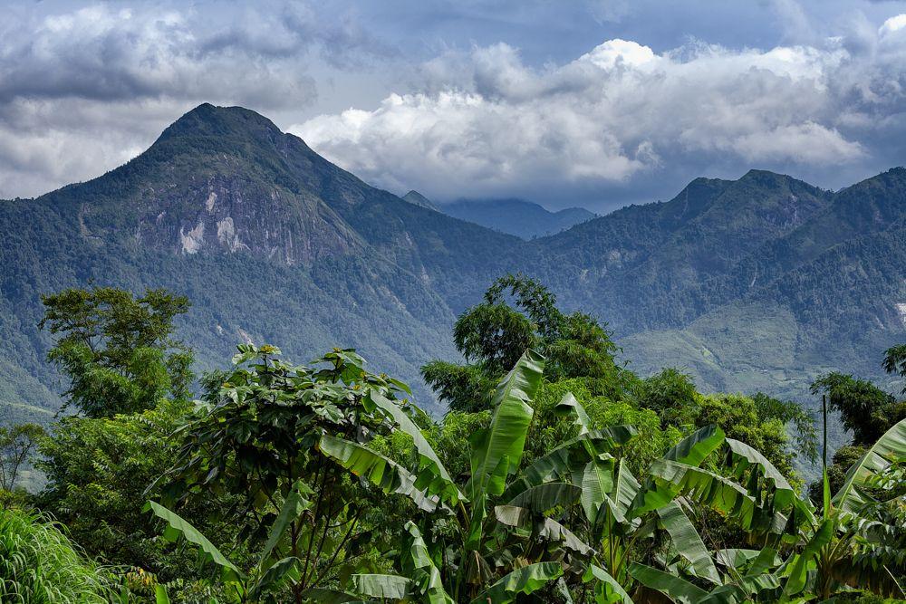 Photo in Travel #sapa #vietnam #mountain