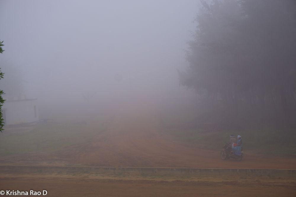 Photo in Nature #fog #mist #landscape