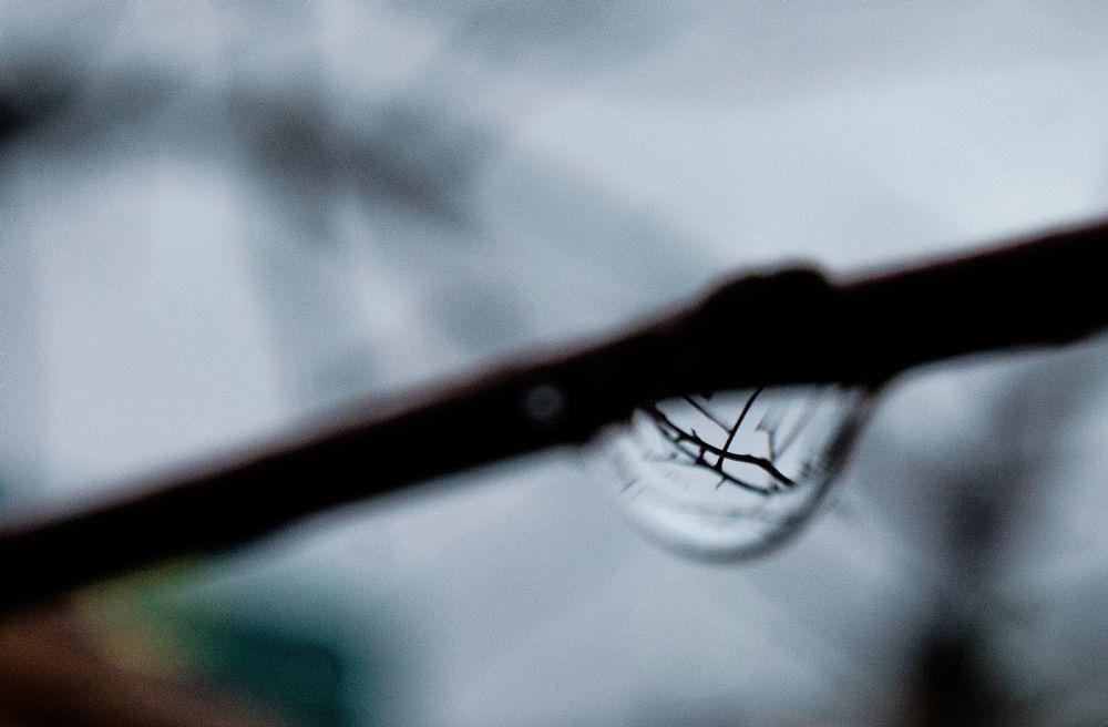 Photo in Macro #droplets #macro #fujifilm #bokeh #dof