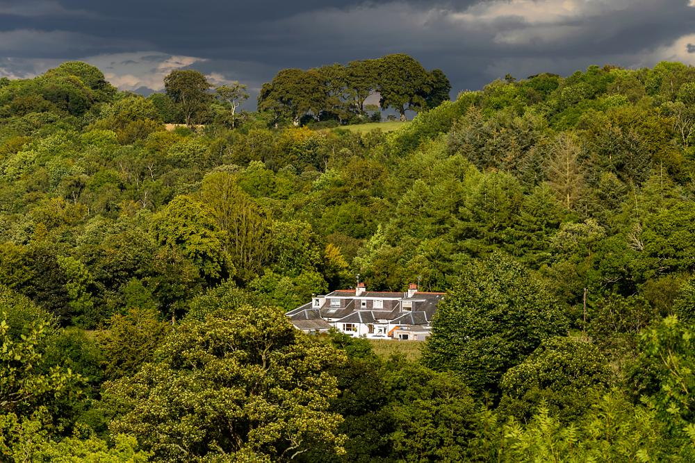 Photo in Landscape #gadgirth mains #houses #trees #annbank #contrast #stormy