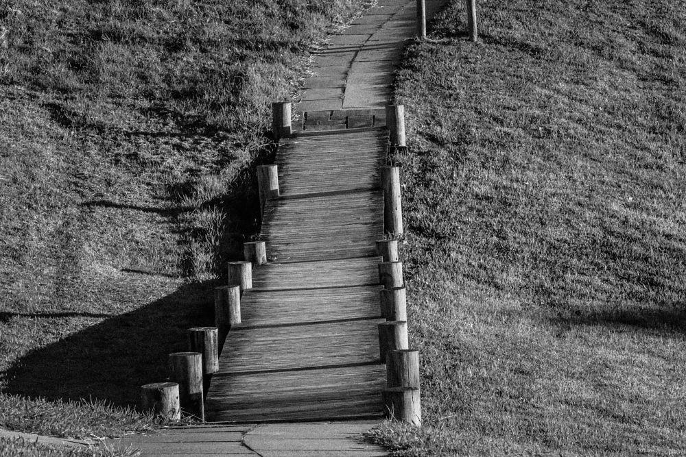 Photo in Black and White #b/w #grass #hill #bridge