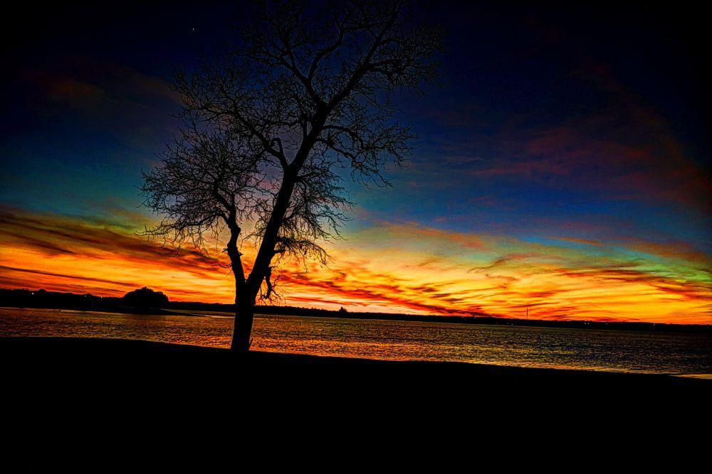 Photo in Landscape #sunset #venus #tree #lake #water
